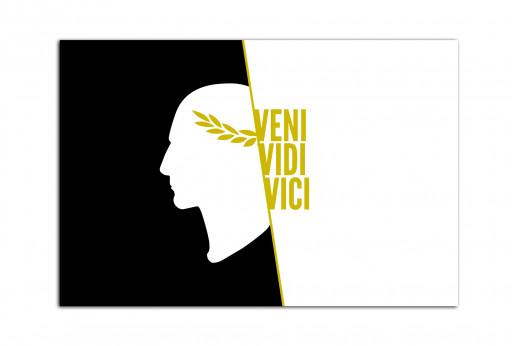 Постер Veni Vidi Vici