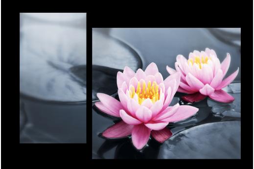 Модульная картина Две лилии